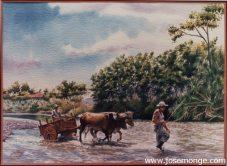 Carreta, Bueyes en río