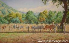Campesinos y el ganado